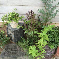 昔ながらの花壇にウッドデッキ製作中